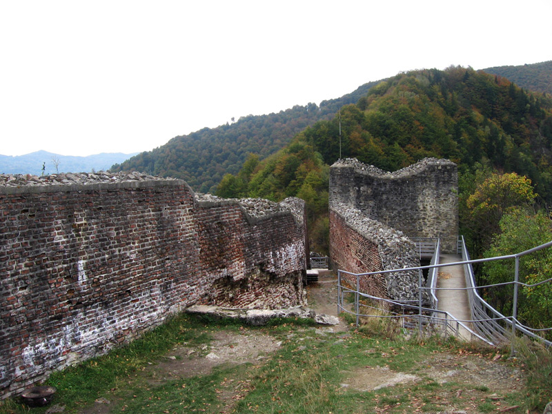 The tower and some walls in Castle Poenari, the real Dracula's castle.